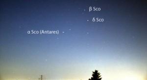 In Mitteleuropa ist δ Sco, der mittlere Stern im Kopf des Skorpions, selbst um die Kulminationszeit weniger als 20° hoch. Bei klarem Himmel kann &delta Sco mit &beta Sco (2 ,m50) und α Sco (0 ,m96, etwas veränderlich) verglichen werden.