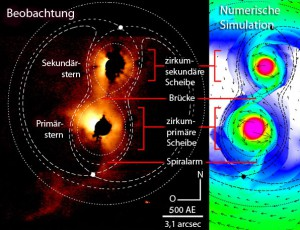 Realität und Simulation des jungen engen Doppelsternsystems SR24 mit Massenfluss von einem Stern zu seinem Begleiter (unten) stimmen außerordentlich gut überein; eingezeichnet sind auch die Roche-Grenzen und in der zweidimensionalen Simulation neben der Materiedichte auch die Strömungsgeschwindigkeiten. [The graduate University for Advanced Studies & the National Astronomical Observatory of Japan / Chiba University]