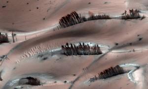 Auch soetwas kann man mit HiRISE auf dem Mars entdecken: Im Winter bildet sich über einem großen Dünenfeld in den hohen Nordbreiten des Mars eine CO2-Eisschicht, die im Frühjahr sublimiert – dabei gerät der Sand oft ins Rutschen und bildet bizarre dunkle Spuren, während gleichzeitig hier und da Staub aufgewirbelt wird. [NASA/JPL/University of Arizona]