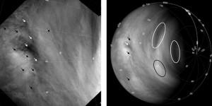 Einzelne Wolkenstrukturen (Pfeile und Ovale) wurden dazu verwendet, um die Windgeschwindigkeiten in unterschiedlichen Breiten und Höhen zu ermitteln. So flossen seit 2006 letztlich über 430000 Beobachtungen in die Analysen ein. [Khatuntsev et al.]