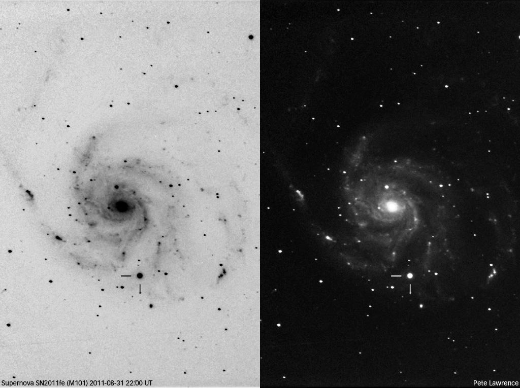 Die Supernova SN 2011fe in M 101 am 31.8. [Pete Lawrence]