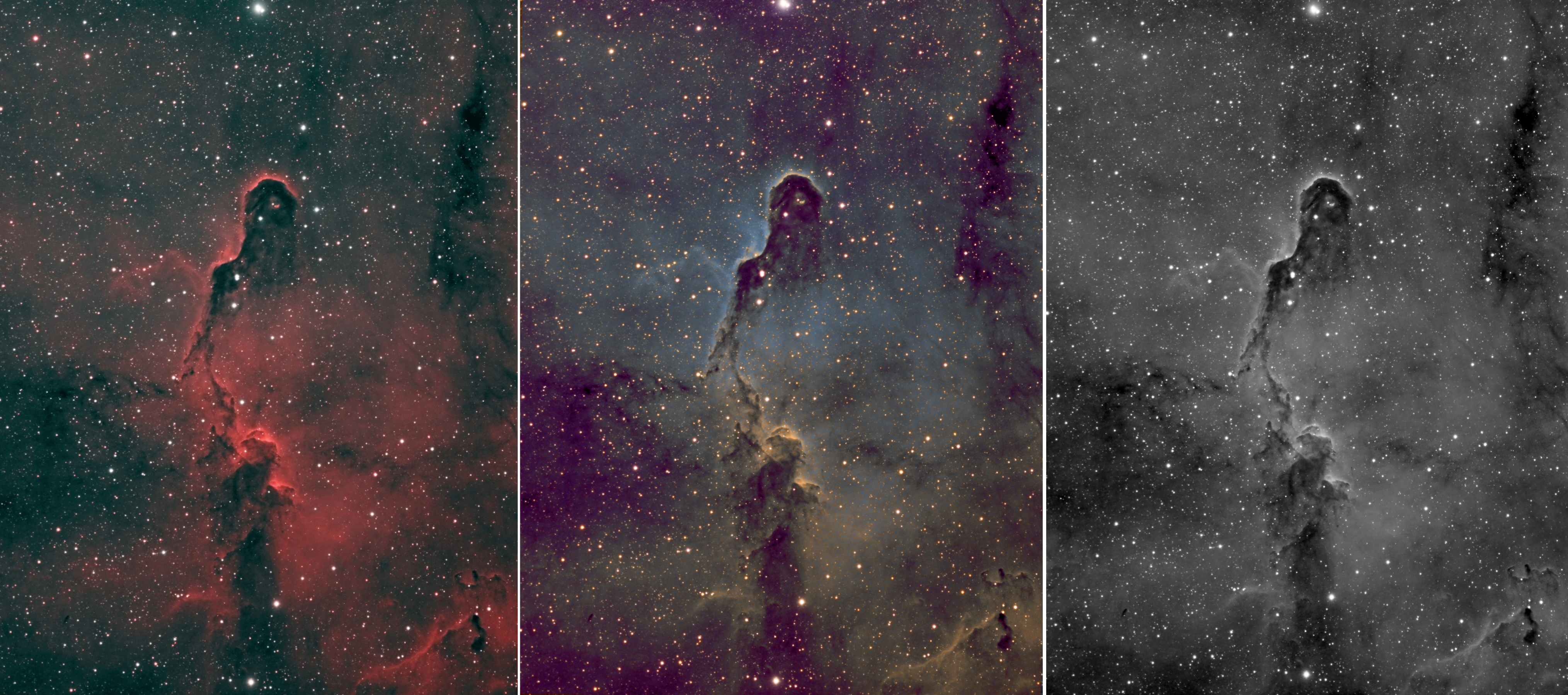 2013-04-08 11-27-22 – 2013_IC1396_Collage