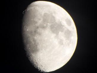 Mond mit Goldenem Henkel