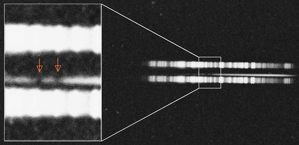 spektrum_processed_arrows