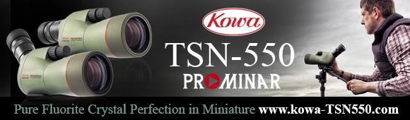 kowa-tsn-550-web-banner-580×170
