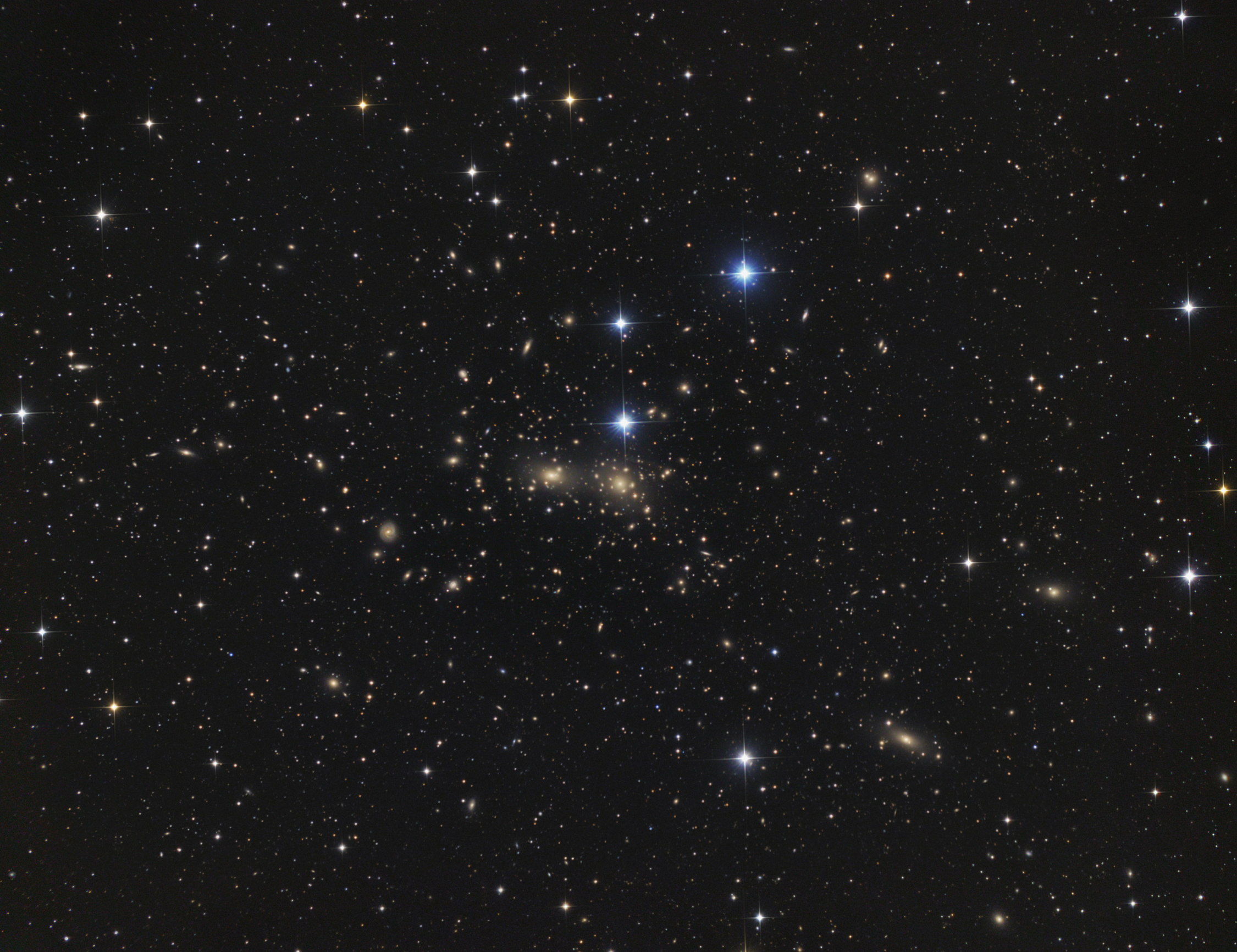 abell1656