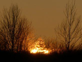 Sonnenuntergang Venn P. Hombach