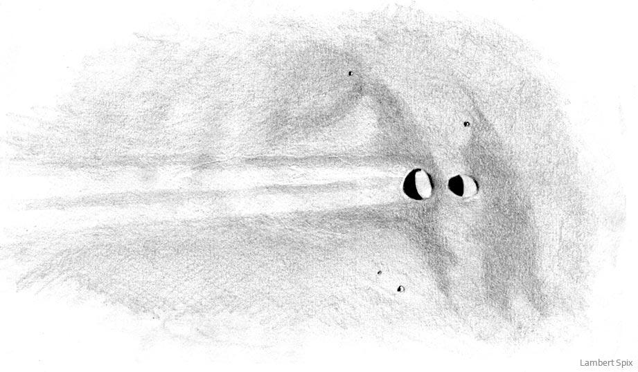messier-zeichnung-spix-03