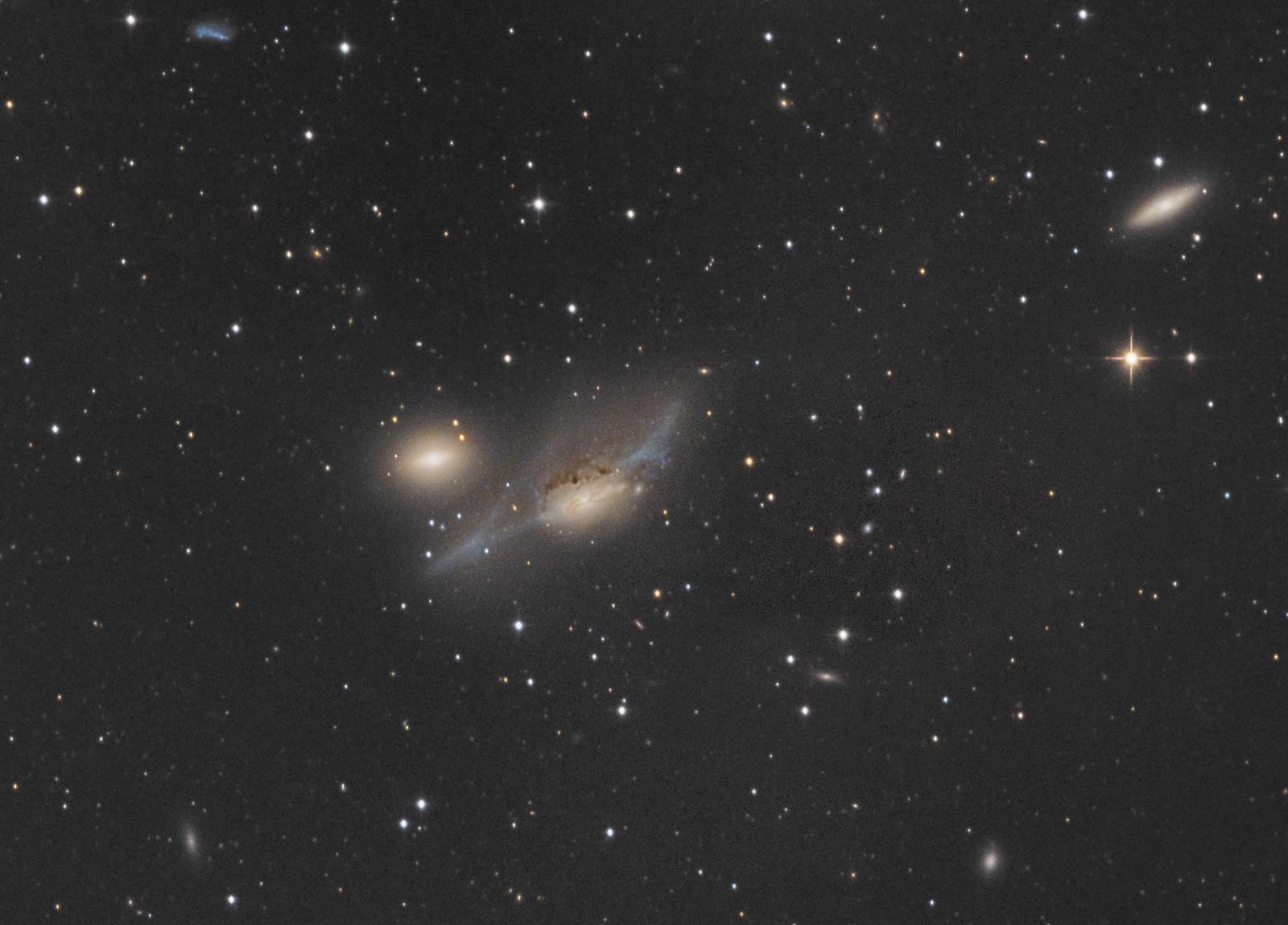 NGC4438