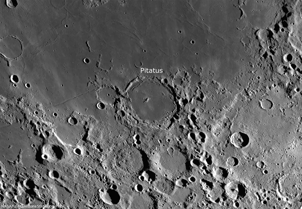 Wallebene Pitatus